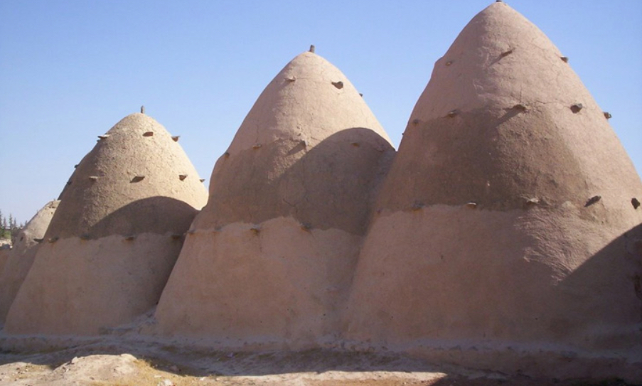 Beehive Homes of Syria