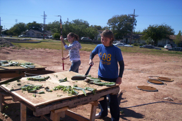 Chopping Nopales in Texas