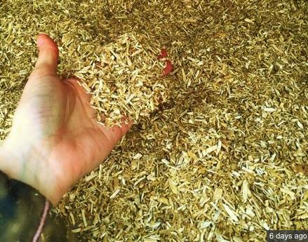 hemp core bedding